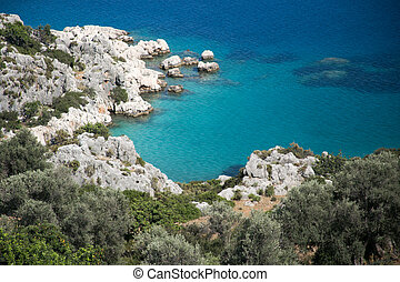 Beautiful bay with rocks olive trees turqouise sea - view...