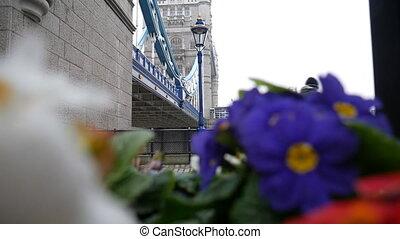 Bright flowers. Ancient stone bridge. - London. England....