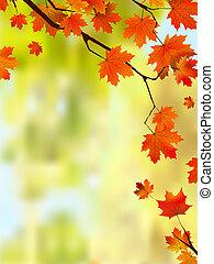 automne, feuilles, frontière, ton, texte