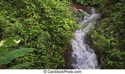 Small Mountain Stream Meanders down a Hillside, with Sound -...