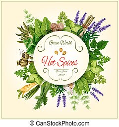 Spices and leaf vegetable poster for food design - Spices...