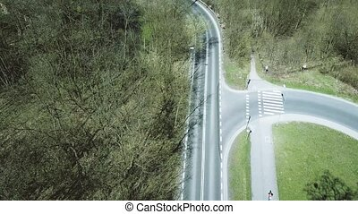Aerial shot of car road in the forest on a spring day.