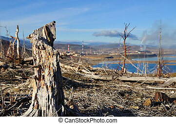 Old stump - Dead trees near to metallurgical factories....