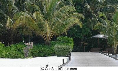 Boardwalk of a Luxury Beach Resort in the Maldives - Wooden...