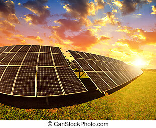 Photovoltaic panels at sunset.