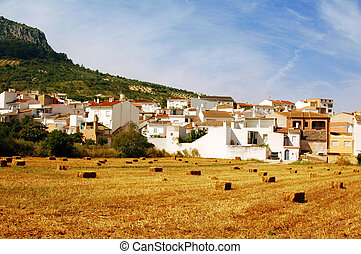 straw bales in Andalusia, Spain