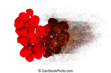 Heart of red rose petals burns to black ash. - Heart of red...