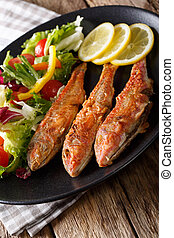 Fried fish red mullet with fresh vegetable salad close-up....