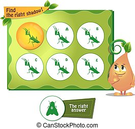 find right shadow mantis - visual game for children and...