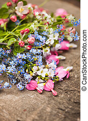 Spring flowers close up