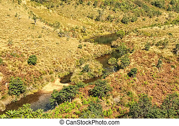 Beautiful view of river in Horton Plains - Scenic landscape...