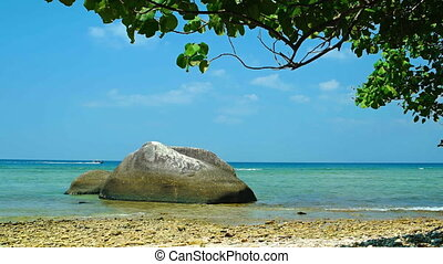 Ocean beach with big stones and a branch of tropical tree