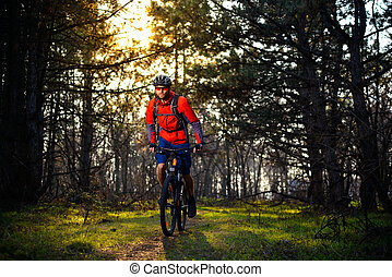 Cyclist Riding the Bike on the Trail in Beautiful Fairy Pine Forest. Adventure and Travel Concept.