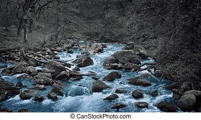 Blue River In Colorless Forest Abstract - Abstract forest...
