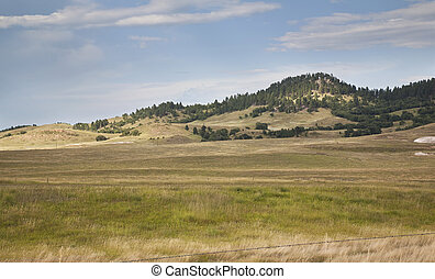 Hills and pine trees in the Black Hills of South Dakota -...