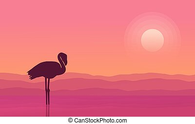 At sunrise flamingo scene silhouettes