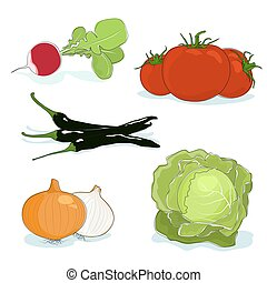 Fresh Gardening Vegetables Isolated on a White Background, a...