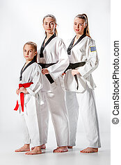 The studio shot of group of women posing as karate martial...