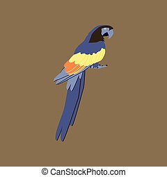 Vector illustration in flat style of parrot