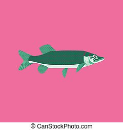 Vector illustration in flat style pike