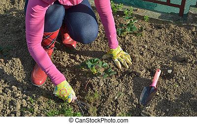 Woman Working a Garden