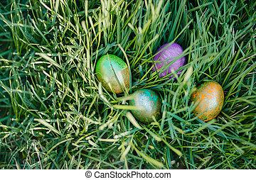蛋, 草, 復活節, 上色