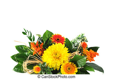 bunch of gerbera daisy on white isolated background