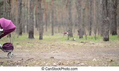 Mother walking with a baby stroller In the Forest