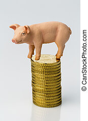 pig on stack of coins
