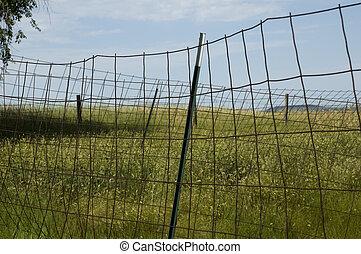 Fence on Wyoming Landscape