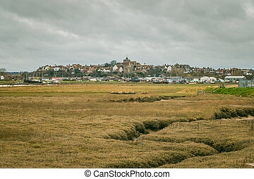 Rye on the hill