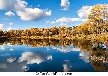 reflected in a forest lake autumn trees