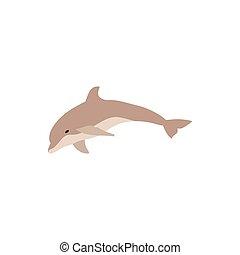 Cute dolphin jumping cartoon character illustration. Vector