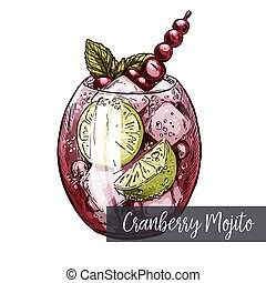 Cranberry mojito with lime and berries, vector realistic...