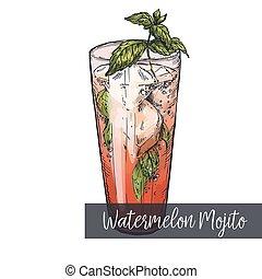 Watermelon mojito cocktail, colorful realistic sketch vector...