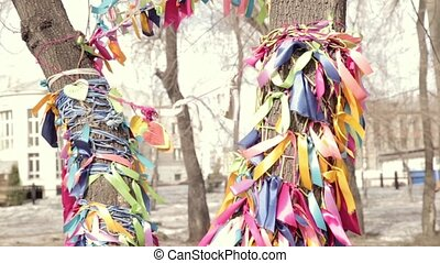colored ribbons on a wish tree, sacred place and symbolic...