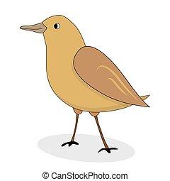 Cartoon nightingale bird vector. Luscinia luscinia,...