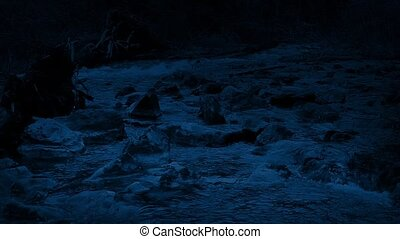 Pan Across Wild River Shore At Night