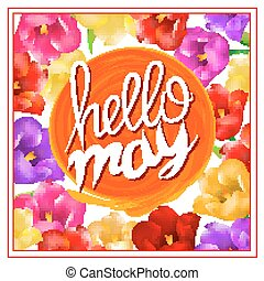 lettering hellow may. sun orange. background with colorful flowers tulip isolated on white background. Vector EPS10.