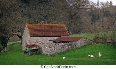 Old Farm House In The Country - Scenic country landscape...