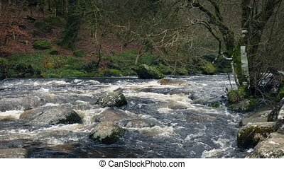Pan Across Rugged Woodland River - Panning shot across river...
