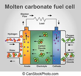 Molten carbonate fuel cells. - Molten carbonate fuel cells...