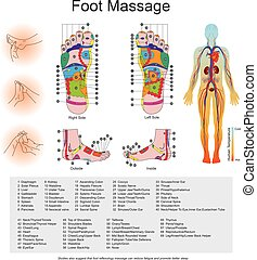 foot massage - While various types of reflexology related...