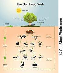 cibo, suolo,  web