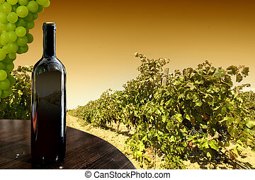 Wine bottle against a vineyard