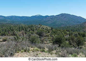 High mountain wilderness south of Prescott, Arizona