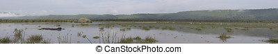 Panorama of Lake Manyara, Tanzania - Panorama of Lake...