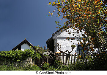 Farm houses at Lake Balaton - Old farmhouses in Szigliget,...