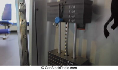 exercise equipment: loads moving up and down.