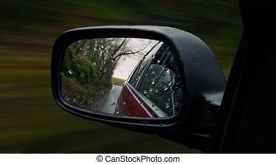 Wing Mirror Driving In And Out Of Woods - Side mirror view...
